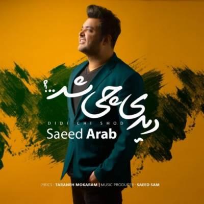دانلود آهنگ سعید عرب دیدی چی شد