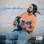 دانلود آهنگ جدید کودکانه از امیر عباس گلاب
