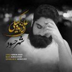 دانلود آهنگ جدید محمد زندوکیلی به نام دلتنگی