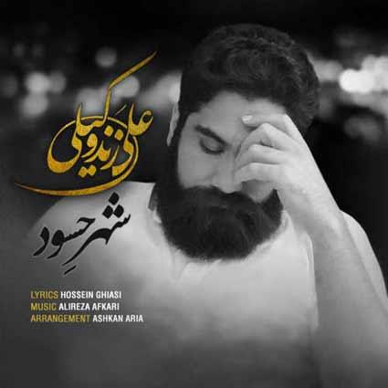 دانلود آهنگ جدید شهر حسود از علی زندوکیلی