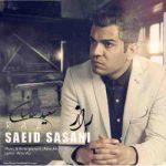 دانلود آهنگ جدید ساسان ساسانی کیا به نام شاکیم