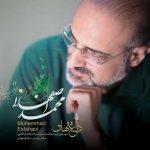 دانلود آهنگ جدید دلدادگان از محمد اصفهانی